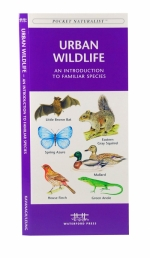 Urban Wildlife Pocket Naturalist Guide