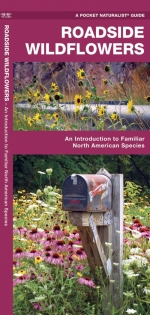 Roadside Wildflowers Pocket Naturalist Guide