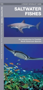 Saltwater Fishes Pocket Naturalist Guide