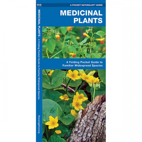 Medicinal Plants Pocket Naturalist Guide