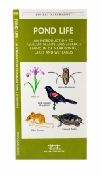 Pond Life Pocket Naturalist Guide
