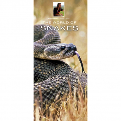 The World of Snakes Explorer Guide