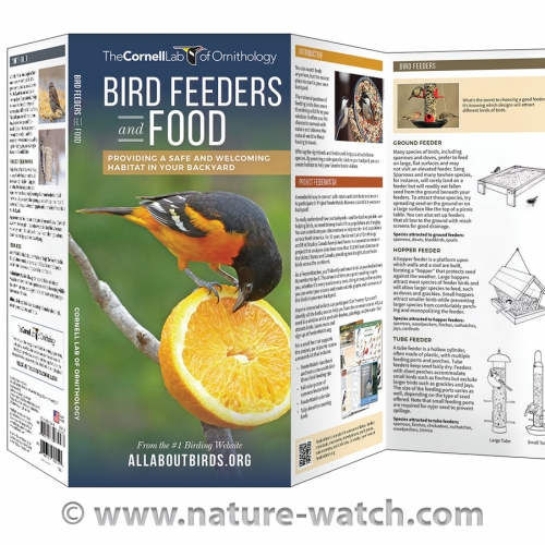 Bird Feeders & Food: Cornell Lab Pocket Guide