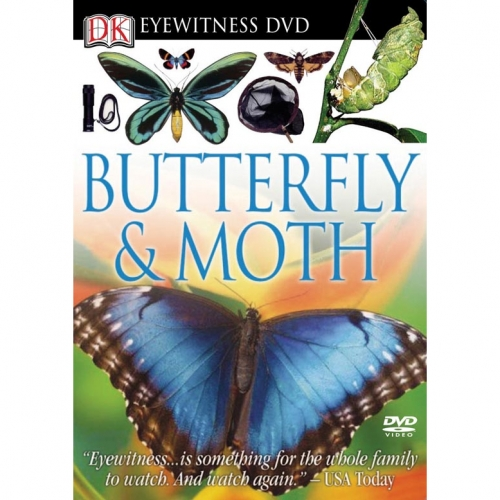 Butterfly & Moth Eyewitness DVD