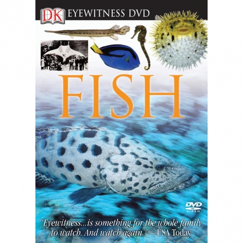 Fish Eyewitness DVD