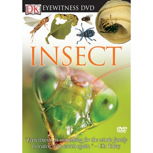 Insect Eyewitness DVD