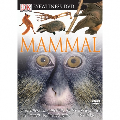 Mammal Eyewitness DVD