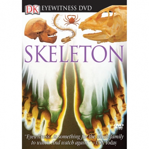 Skeleton Eyewitness DVD