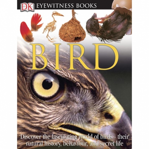 Bird: Eyewitness Book