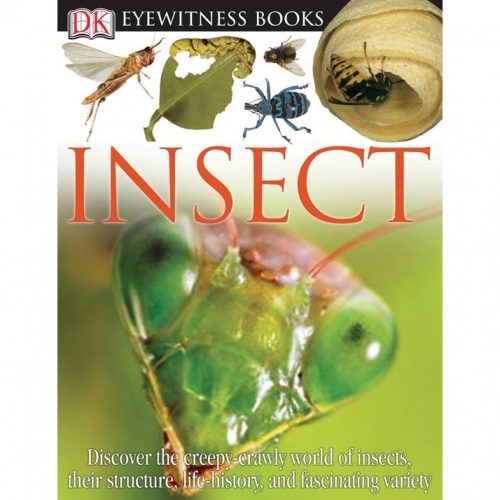 Insect: Eyewitness Book