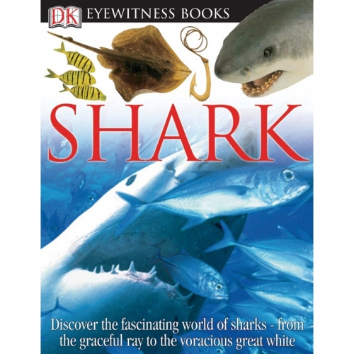 Shark: Eyewitness Book