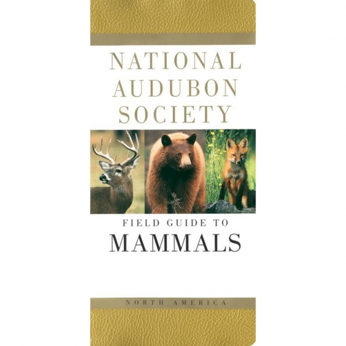 Mammals: National Audubon Society Field Guide