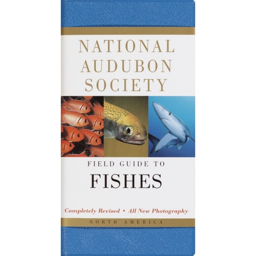 Fishes: National Audubon Society Field Guide