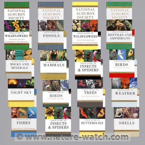 National Audubon Society Field Guides Book Set (16 books)