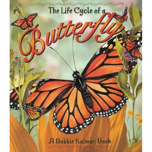 The Life Cycle of a Butterfly Book
