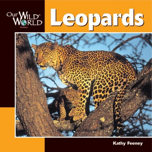 Leopards: Our Wild World