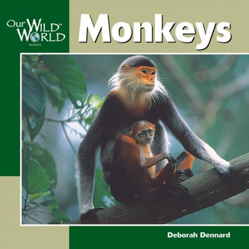 Monkeys: Our Wild World