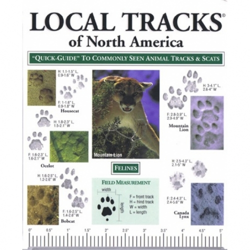 Tracks of North America Quick Guide