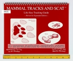 Mammal Tracks and Scat: Life Size Tracking Guide