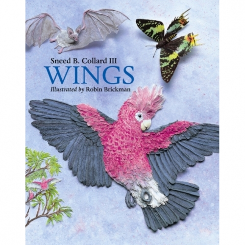 Wings Book