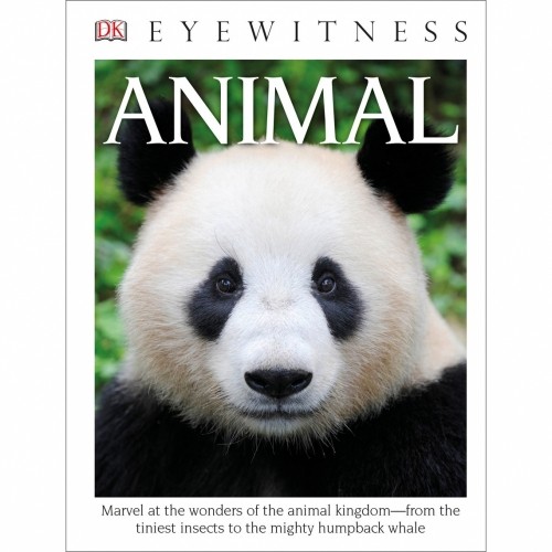 Eyewitness Paperback: Animal