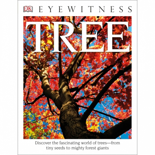 Eyewitness Paperback: Tree