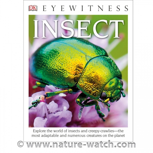 Eyewitness Paperback: Insect