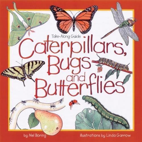 Caterpillars, Bugs and Butterflies Take Along Guide