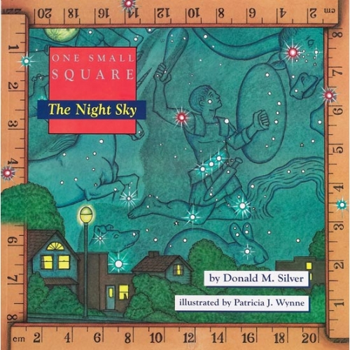 Night Sky: One Small Square