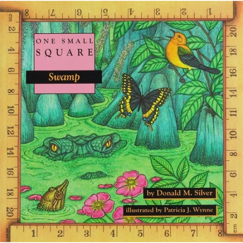 Swamp: One Small Square