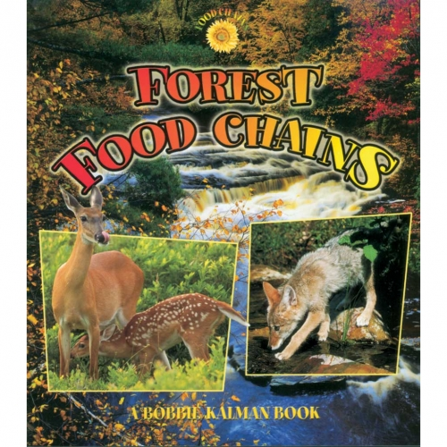 Forest Food Chains Book