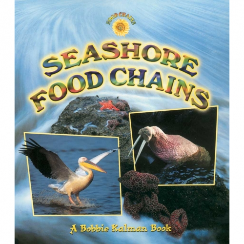 Seashore Food Chains Book