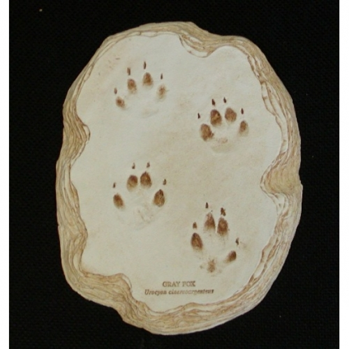 Gray Fox Track Plaque
