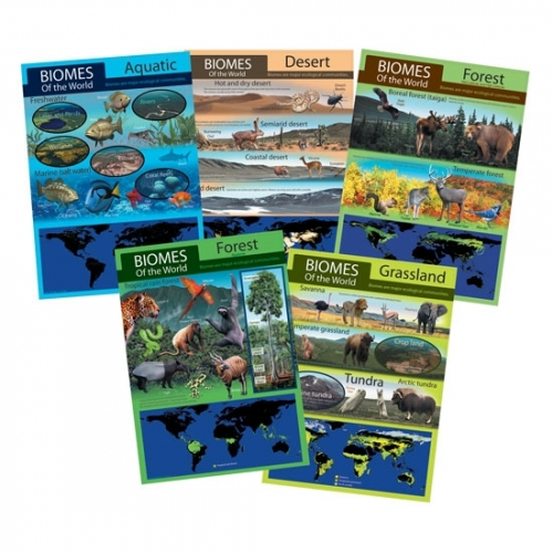 Habitats: Biomes of the World 5 Poster Set