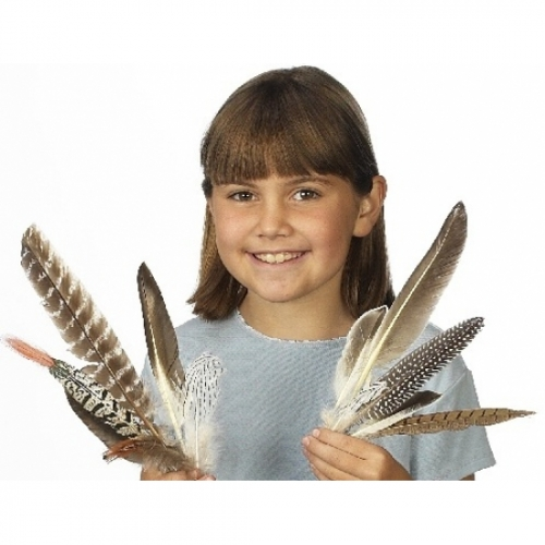 Feather Assortment Set (10 Feathers)